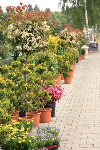 Gartencenter Werner